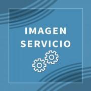 Servicio 2